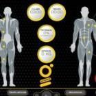 entranimiento con electroestimulación EMS Xbody Calp